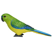 Science & Nature - Orange Bellied Parrot