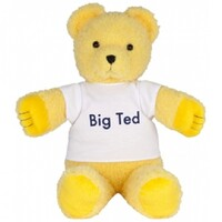 Play School - Big Ted Plush Toy 28cm
