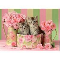 Educa - Kittens with Roses Puzzle 500pc