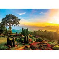 Educa - Beautiful Garden Puzzle 1000pc