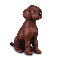 Collecta - Irish Red Setter Puppy  88069