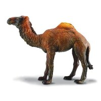 Collecta - Dromedary Camel 88208