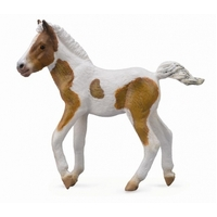 Collecta - Dartmoor Hill Foal Skewbald 88735
