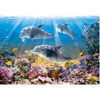 Castorland - Dolphins Underwater Puzzle 500pce