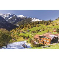 Jumbo - Berner Oberland Switzerland Puzzle 1500pc