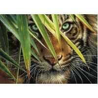 Ravensburger - Mysterious Tiger Puzzle 1000pc