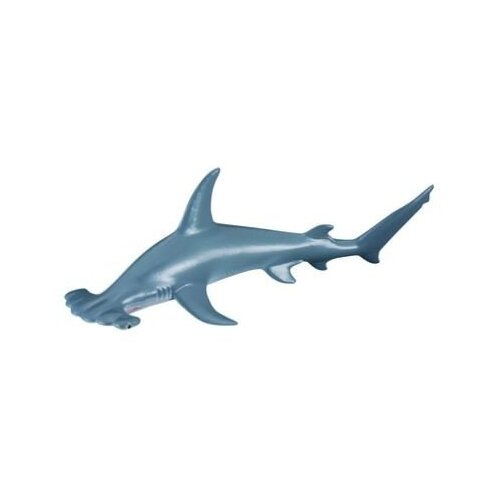 Collecta - Scalloped Hammerhead Shark 88045
