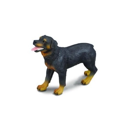 Collecta - Rottwieller 88189