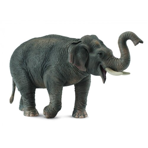 Collecta - Asian Elephant 88486